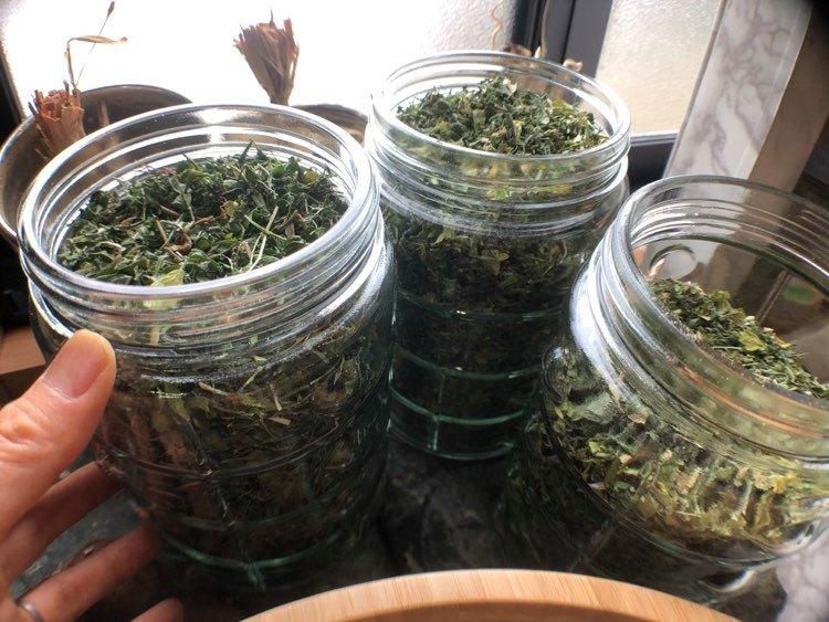 野草で茶0.jpg